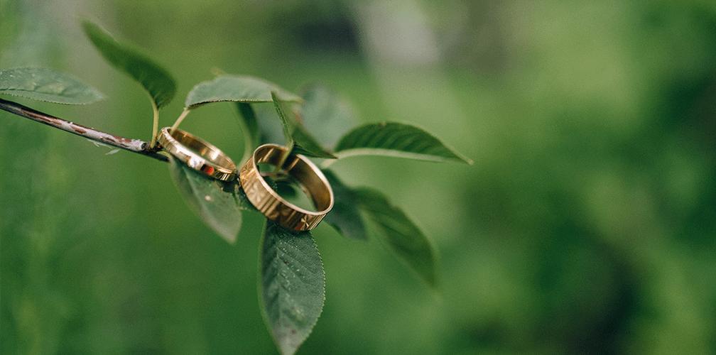 Что символизируют обручальные кольца: история и традиции
